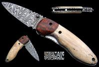 Oosik and Snakewood Cheyenne WEB
