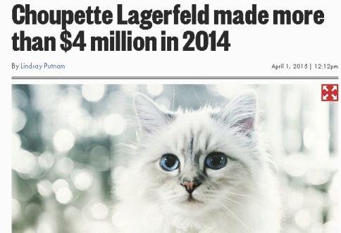 稼ぐ 猫 インスタ ペット好き必見の副業5選!犬や猫を飼っている方にオススメの仕事