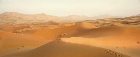 desert-2435405_960_720