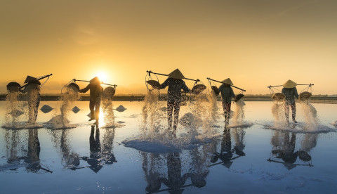 salt-harvesting-3060093_1280