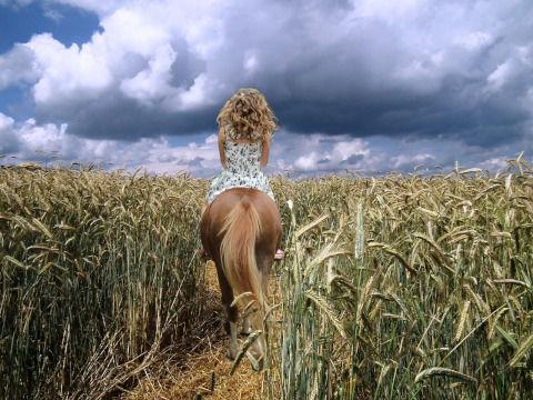 horsewoman-2707691_1280
