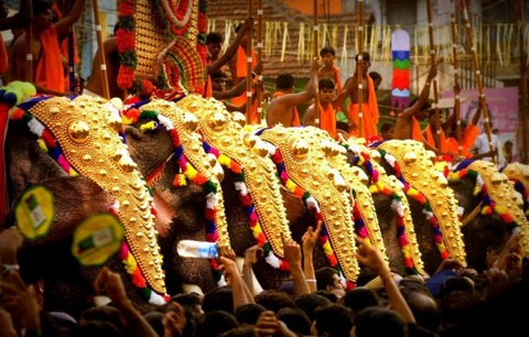 imgcaparisoned-elephants-during-thrissur-festival
