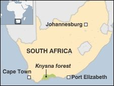 Image result for knysna forest on a map