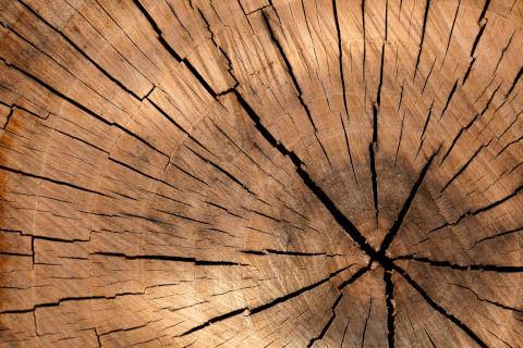 lumber-84678_1280