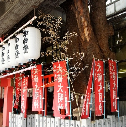 Kayashima-station-tree-studioohana-3