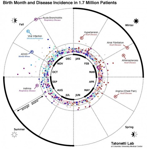 disease-700x710