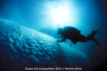 5th-c-ocean-art-2015-morten-beier-350