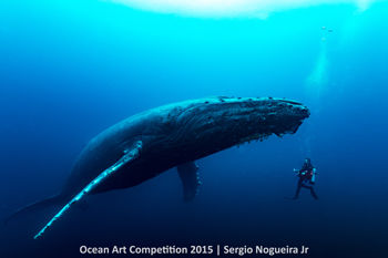 4th-ndslr-ocean-art-2015-sergio-n-jr-350_0