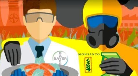 Monsanto-Bayer-Merge