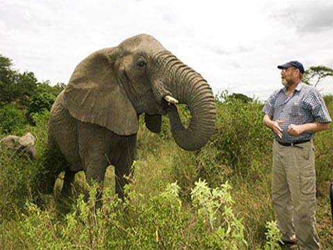elephant-whisperer-thumbnail