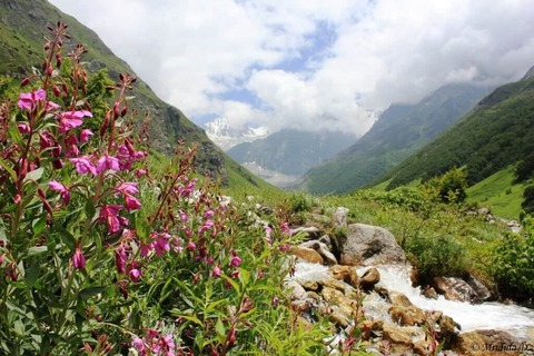 uttarakhand-tourism