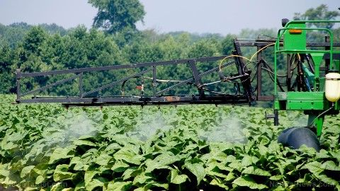 Spraying-Tobacco-Crop-Pesticide-Herbicide