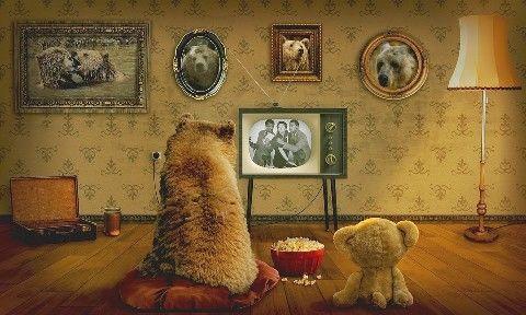 bear-3145874_960_720