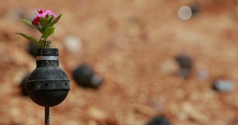 tear-gas-flower-pots-palestine-12