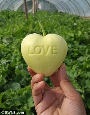 4170721800000578-4607134-Heart_shaped_apples_have_bee