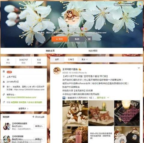 33179DED00000578-3504573-Online_celebri