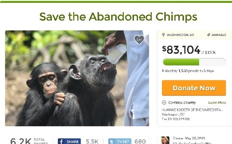 savechimps