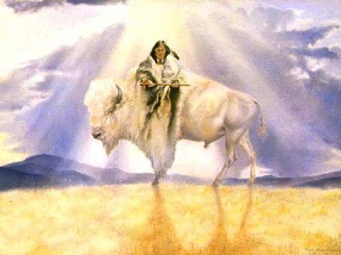 whitebuffalocalfwoman