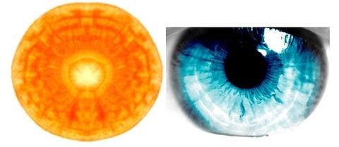 Carrott-Eyeball