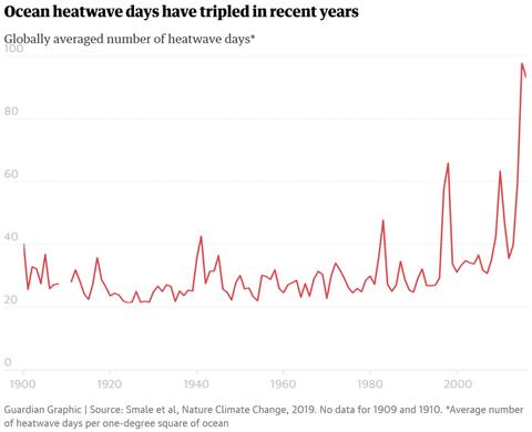 Ocean-heat-wave-d