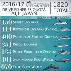 FINAL-2016-2017-Taiji-300x300