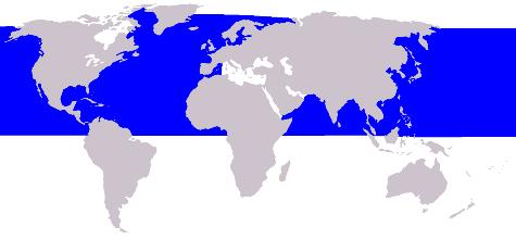 Cetacea_range_map_Minke_Whale