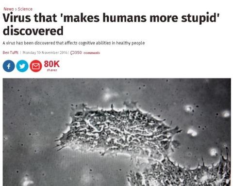 stupidvirus