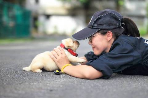 police-puppy-photoshoot-6