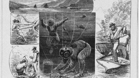 Fig-4_Gillies-et-al-1260x708
