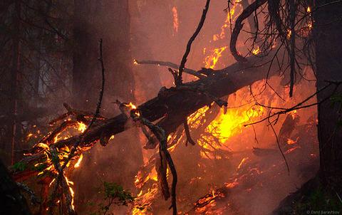 inside_fire_1