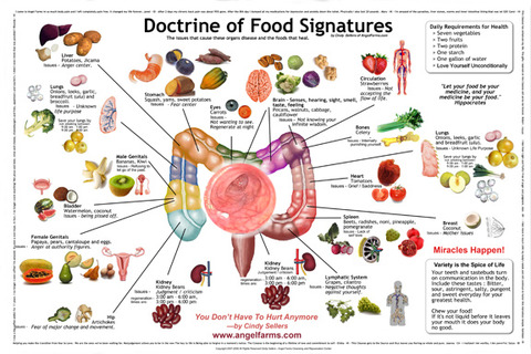 Doctrine-of-Food-Signatures_11x17OPT