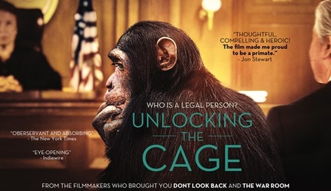 unlocking_the_cage-film