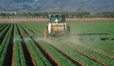 pesticide-e1485290936587