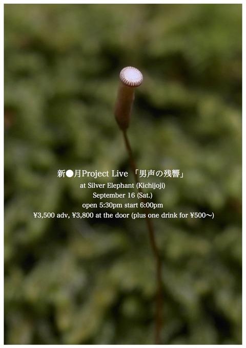 16新●月Project:jpeg