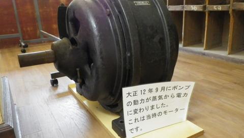 IMGP5020