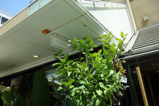 野菜をメインに扱う「Mr.FARMER」モザイク通りにオープン