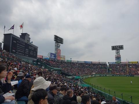 2019-3-28選抜