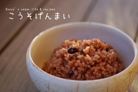 酵素玄米1