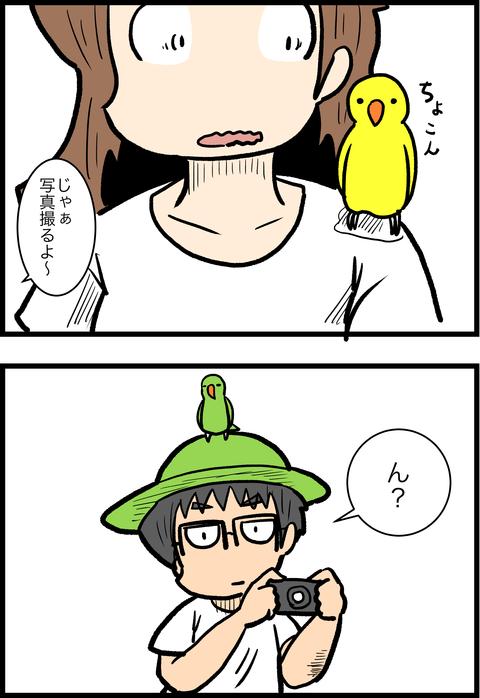 新婚旅行編44_3