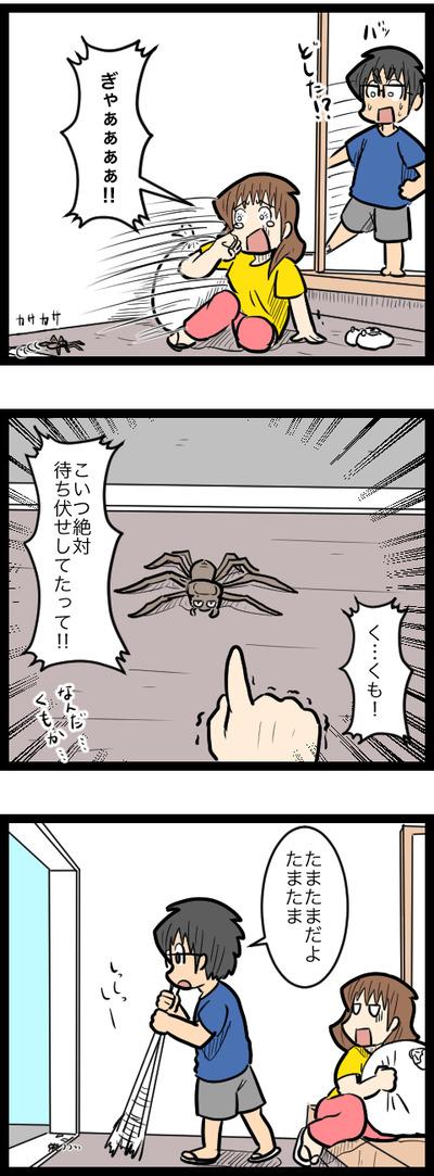 待ち伏せ蜘蛛のコピー2
