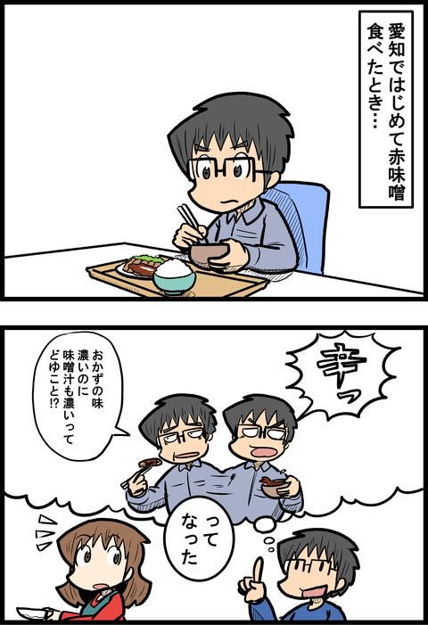 赤味噌_1