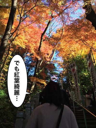 20171202犬山紅葉散策_171204_0275
