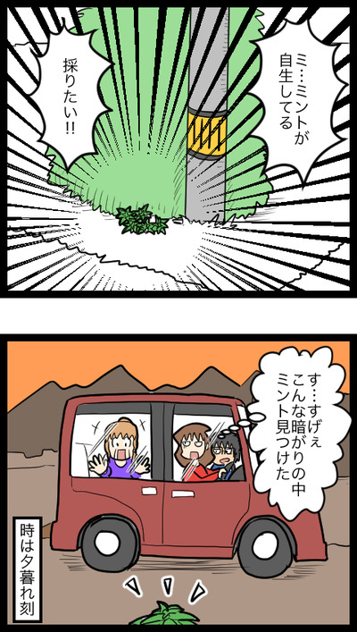 ガーデニング熟練者_3