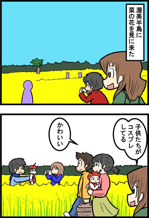 菜の花_1