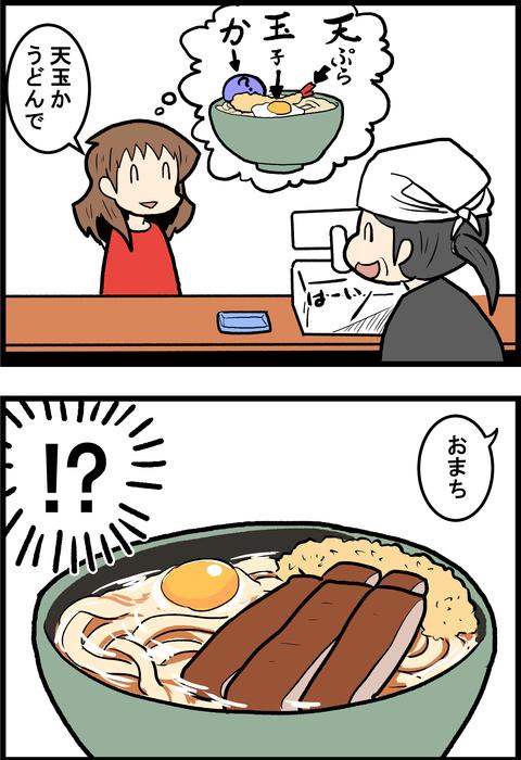 宮崎うどん_2