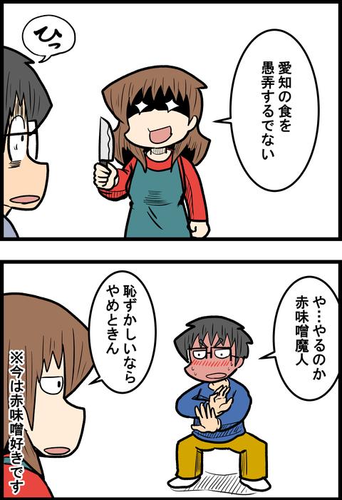 赤味噌_2