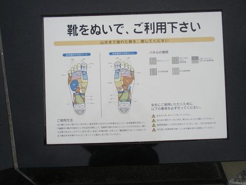 P4200168