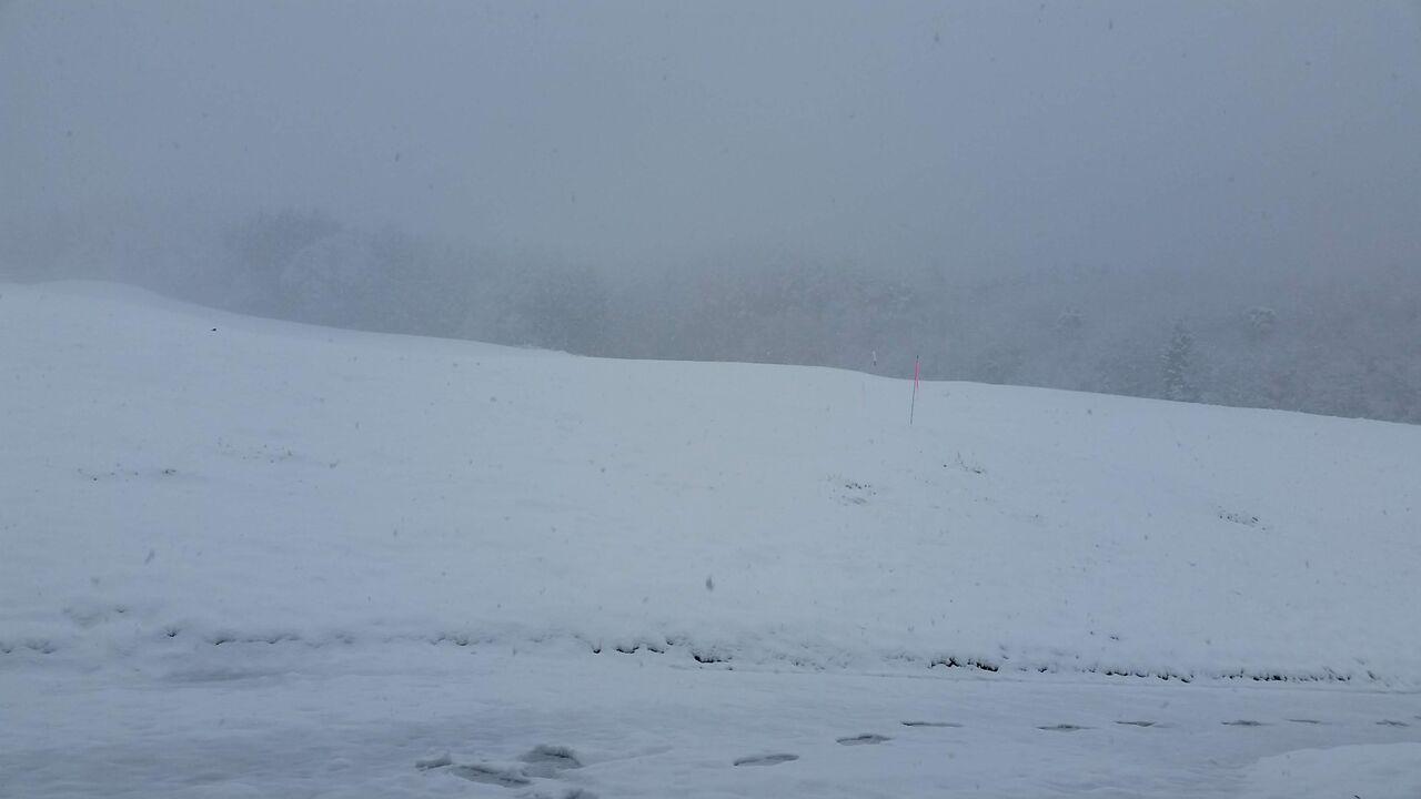 2020年3月29日(日曜日)⛄雪、降りました🙋
