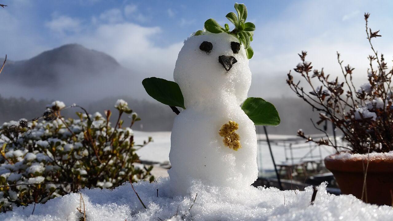 2019年12月23日(月) 雪⛄ふりました〜✨