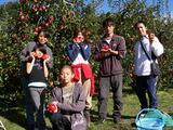 リンゴ狩り♪